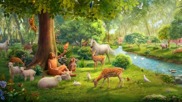 The Story of Genesis: What Was God's Will Behind Adam Naming the Animals?