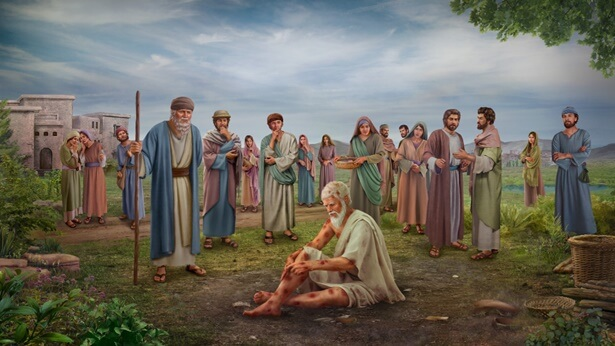 Bible Story Study: Why Did Job Curse the Day of His Birth