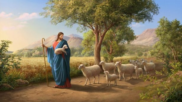 God's Will Behind the Parable of the Lost Sheep