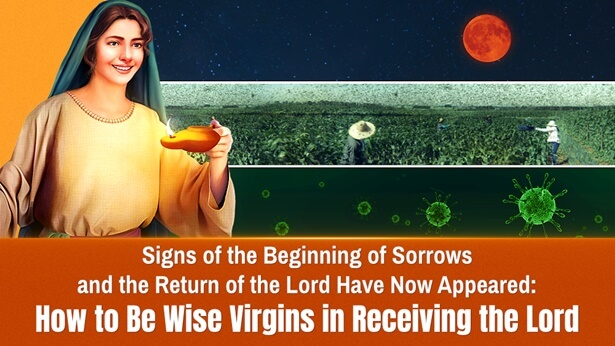 signs of beginning of sorrows