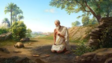 Bible Story Study: Why Did Job Curse the Day of His Birth?