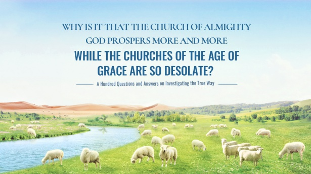 35. Why is it that The Church of Almighty God prospers more and more while the churches of the Age of Grace are so desolate?